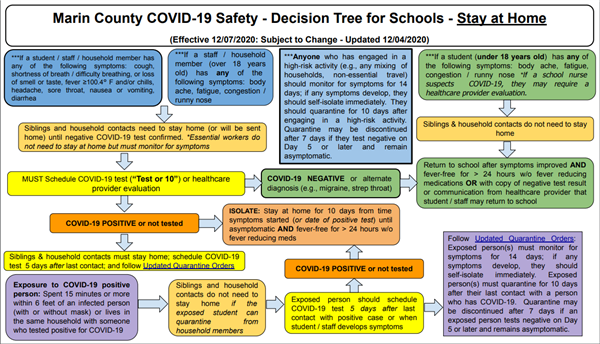 decision tree purple tier stay home order
