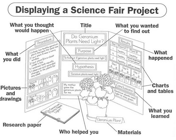 example of science fair display